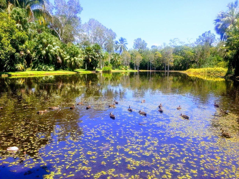 Centenary Lake Cairns